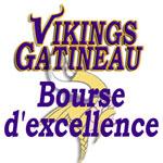 bourse_vikings_150